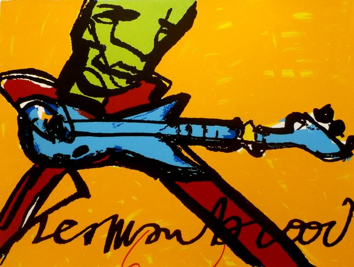 De Gitarist. - Herman Brood